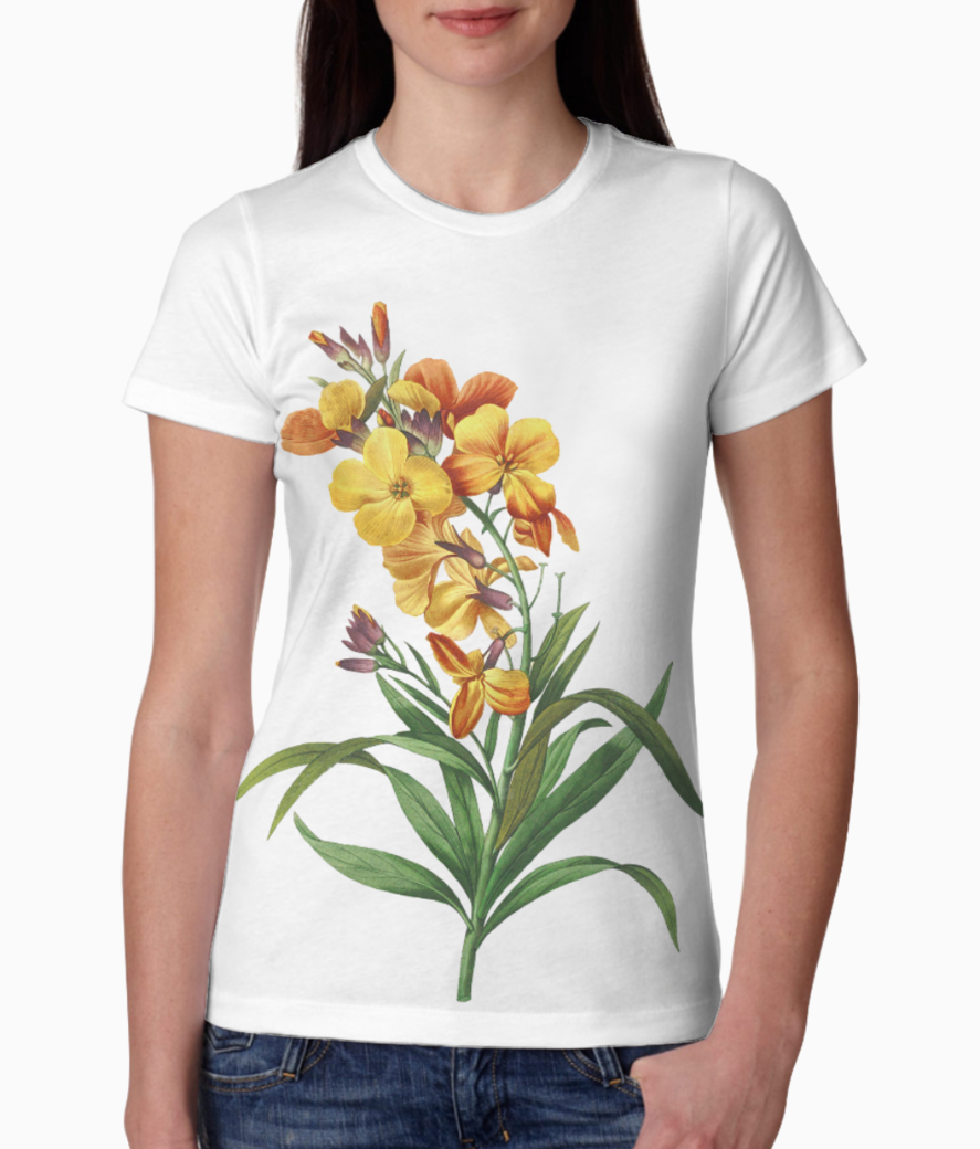 Depositphotos 175767140 stock photo wallflower redoute flower illustration tee front