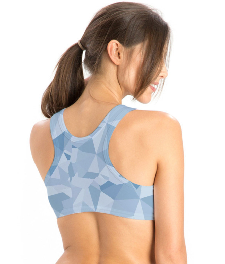 Pose 17d sports bra back