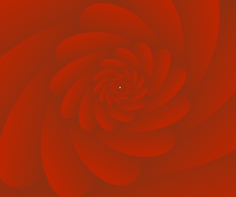 3 d image abstract rose flower background